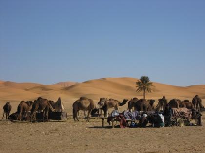 Uitzicht op de woestijn vanuit Kashbah hotel Tombouctou