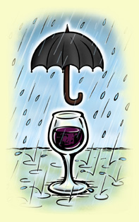 Paraplu Wijn - Nico Den Dulk