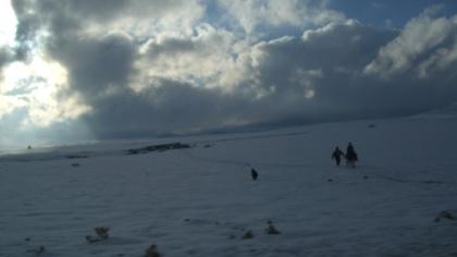 Sneeuw zwervers in Marokko